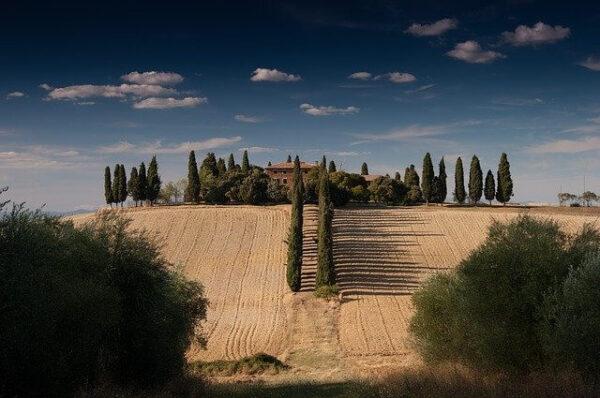 Prefabbricato su terreno agricolo.